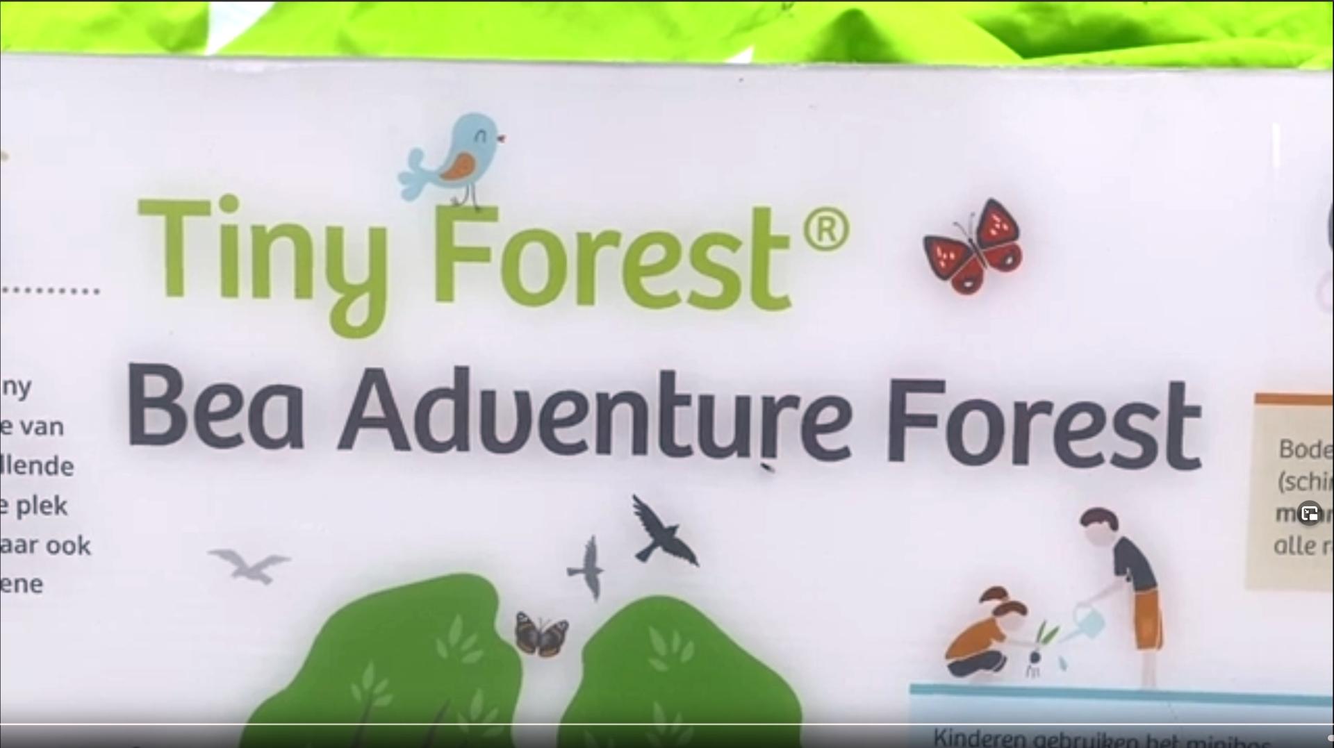 Tiny Forest in aanleg